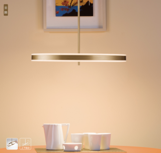 新特丽金麟艺术吊灯单环花灯客厅主灯可转动上下出光