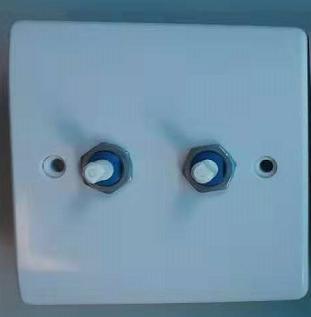 Lightopia 可控硅双旋钮开关